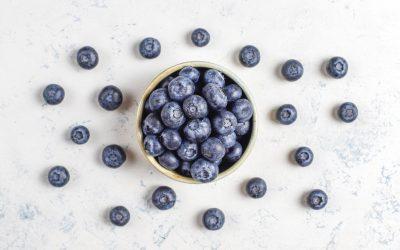Blueberry Days